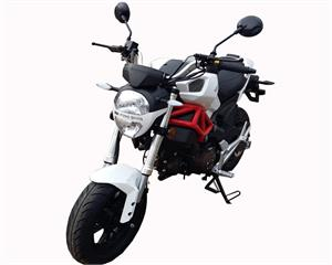 MonkeyMoto 50cc Motorcycle