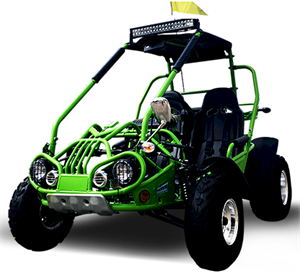 TrailMaster 300 XRX Dune Buggy, Shaft Drive
