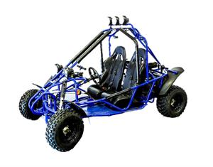 Transformer 200 Buggy Go Kart, CVT AutomatIc, Electric Start