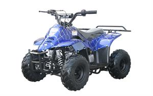 Coolster  Mini 110 ATV, blue