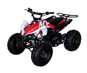 "ACE 125 ATV 3-Speed, Semi Auto with Reverse, Remote Start/Kill/Alarm, 8"" Black Deluxe Wheels, Drum/Disc Brake, Footrests, Front Bumper, Rear Rack"