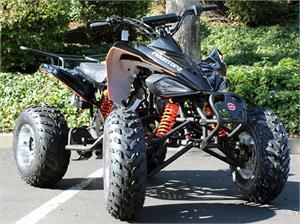 Atv 4 wheeler quad 150cc trailmaster gokartsusa fandeluxe Choice Image