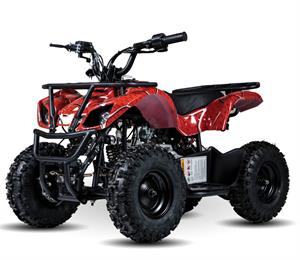 Mini Talon 60cc Kids ATV