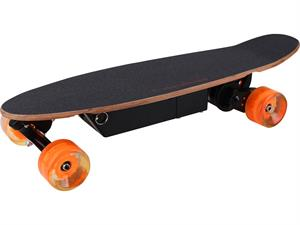 100w Street Electric Skateboard