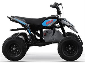 Electric ATV, SSR E350 Youth Size