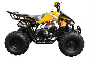 Coolster 125 ATV, Fully Automatic with Reverse