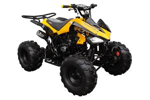 Coolster 125 ATV, Fully-Automatic with Reverse