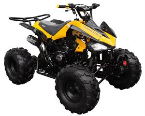 Coolster 125 ATV, 3-Speed Semi-Automatic with Reverse