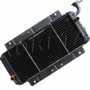 BMS Powerbuggy 250 CN250 RADIATOR