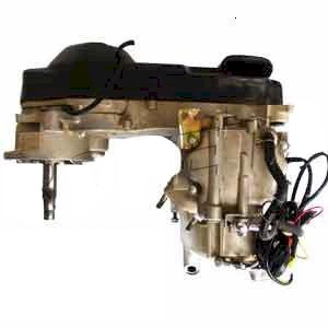 BMS Powerbuggy 250 CN250 COMPLETE ENGINE